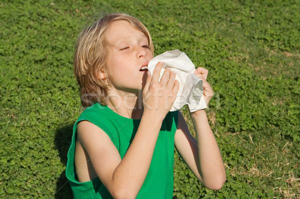 young child sneezing from allergies, hayfever or a cold Stock photo © godfer