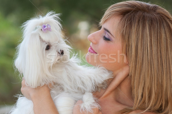 woman with cute small dog Stock photo © godfer