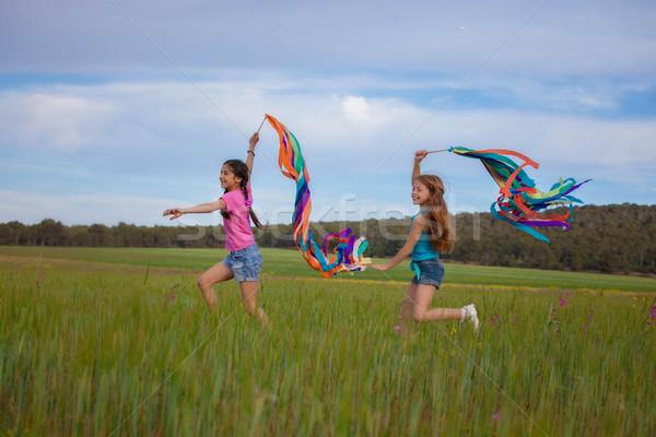 Szabadság egészséges nyár gyerekek fut játszik Stock fotó © godfer