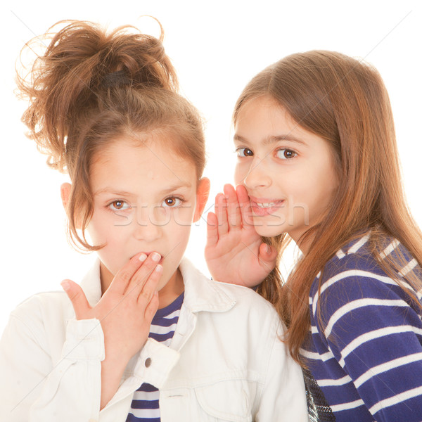children whispering secrets Stock photo © godfer