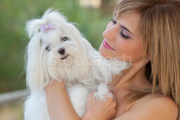 owner with pet lapdog Stock photo © godfer