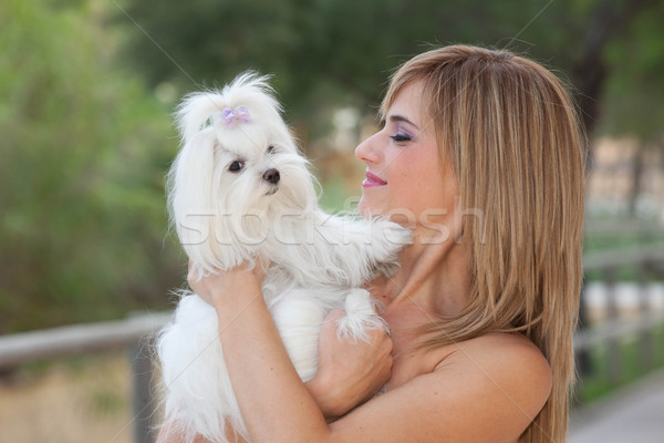 woman with pet small maltese dog Stock photo © godfer