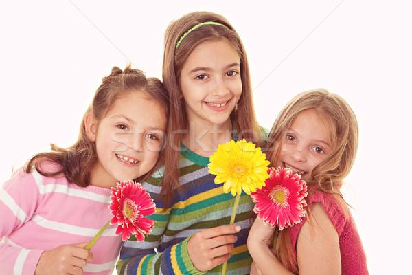 Feliz sorridente irmãs grupo flores crianças Foto stock © godfer