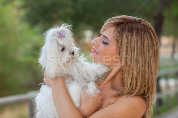woman with family pet Maltese dog Stock photo © godfer