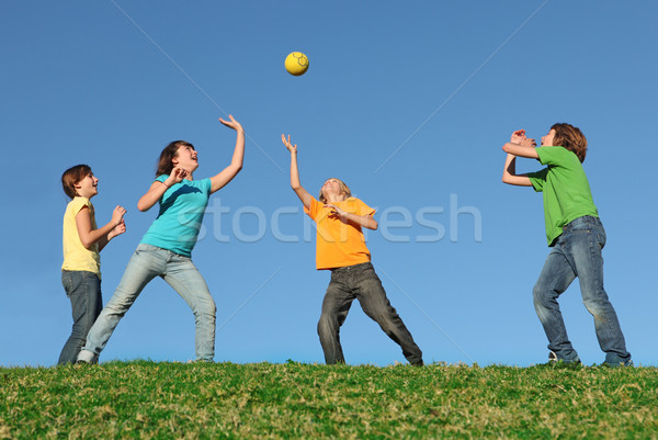 active kids playing ball at summer camp Stock photo © godfer