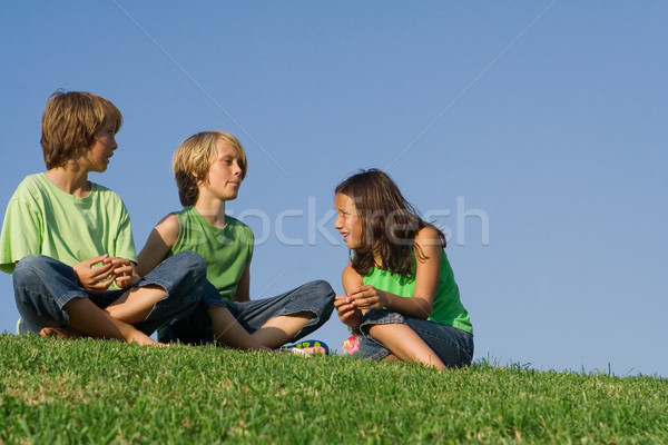 kids or children sitting outside on grass chatting, Stock photo © godfer