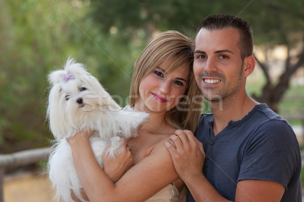 family pet maltese dog Stock photo © godfer
