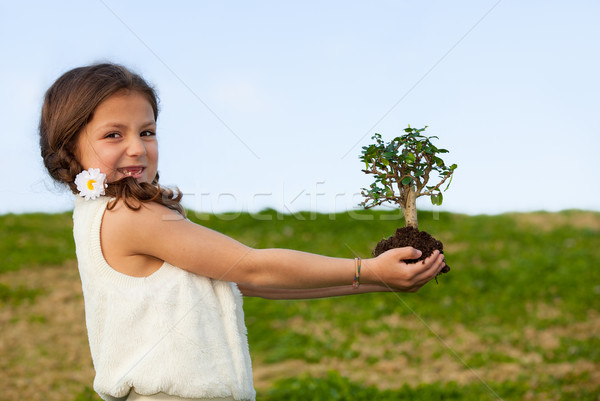 tree concept for nature and invironment Stock photo © godfer