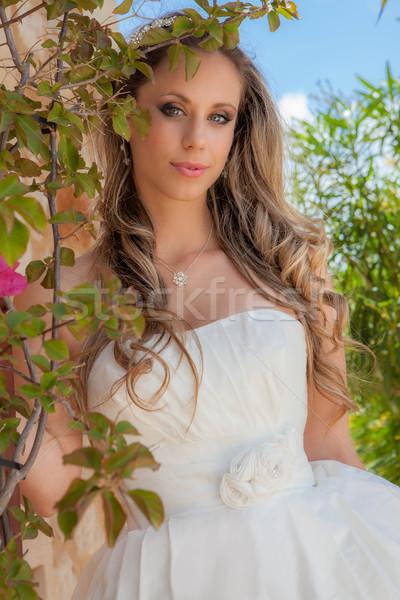 Belo prom vestir festa Foto stock © godfer