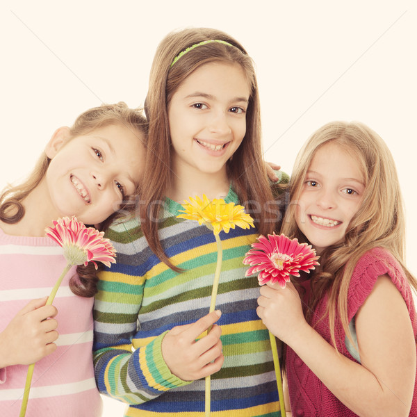 group of happy smiling little girls Stock photo © godfer