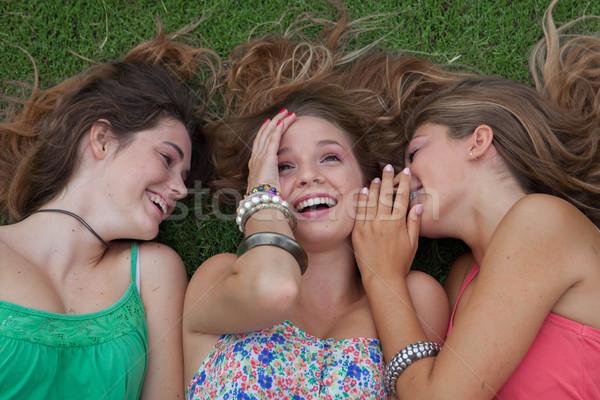 Teen filles chuchotement secrets été Photo stock © godfer