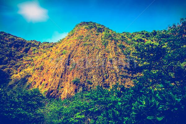 Utazás tájkép hegy sziget égbolt tavasz Stock fotó © goinyk