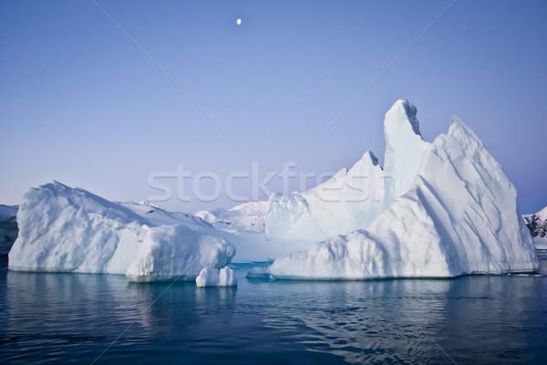 Antarctic iceberg Stock photo © goinyk
