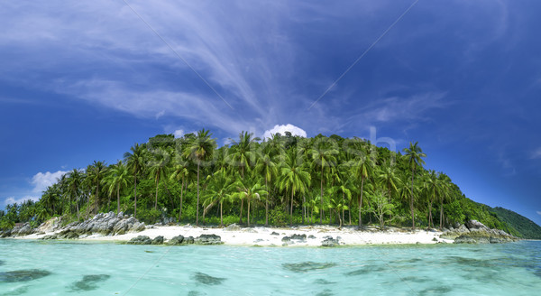 Perfect resort background Stock photo © goinyk