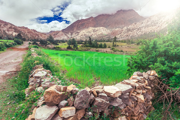 Trekking in Nepal Stock photo © goinyk