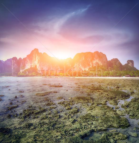 Maya bay Phi phi leh island Thailand Stock photo © goinyk