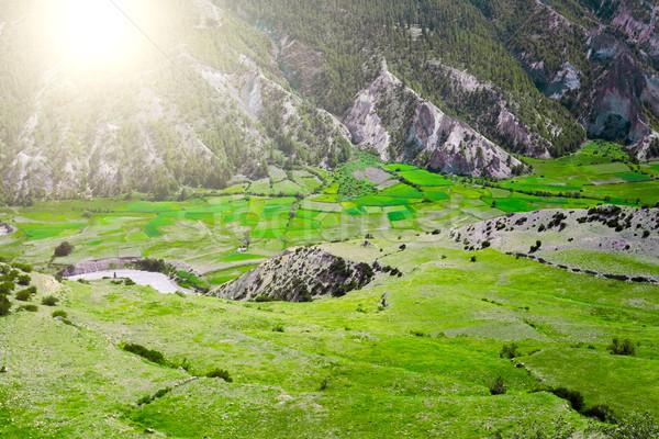 Trekking in Nepal Stock photo © goinyk