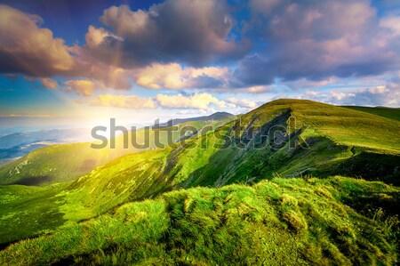 Summer landscape Stock photo © goinyk