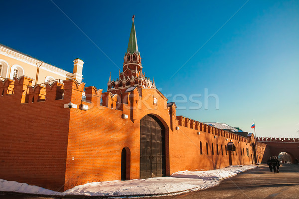 Red Square in winter Stock photo © goinyk