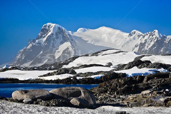 Beautiful snow-capped mountains  Stock photo © goinyk