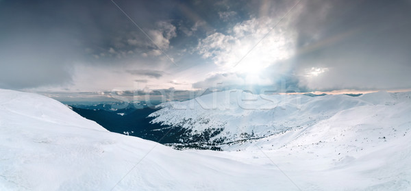 Panoramic winter landscape Stock photo © goinyk