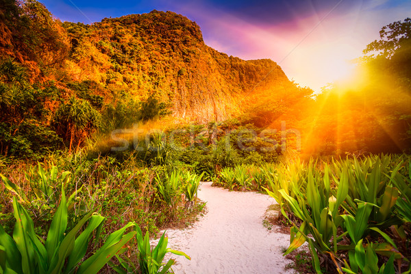 Travel landscape Stock photo © goinyk