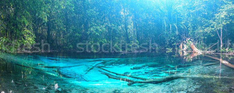 Emerald Blauw zwembad krabi Thailand verbazingwekkend Stockfoto © goinyk