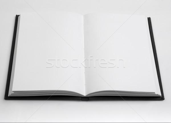 Livre ouvert blanche papier livre note Photo stock © goir
