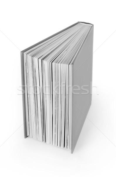 книга мнение серый белый обучения Сток-фото © goir