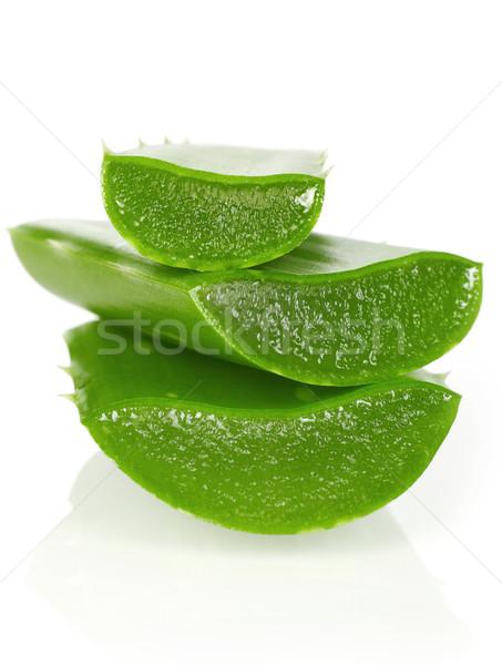свежие алоэ изолированный белый продовольствие лист Сток-фото © goir