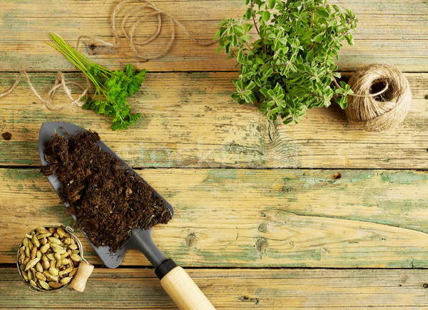 Potting plants, shovel and rope Stock photo © goir