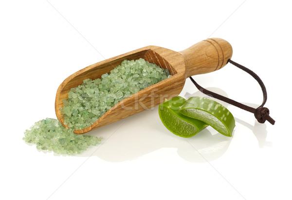 Aloés isolado branco planta cuidar Foto stock © goir
