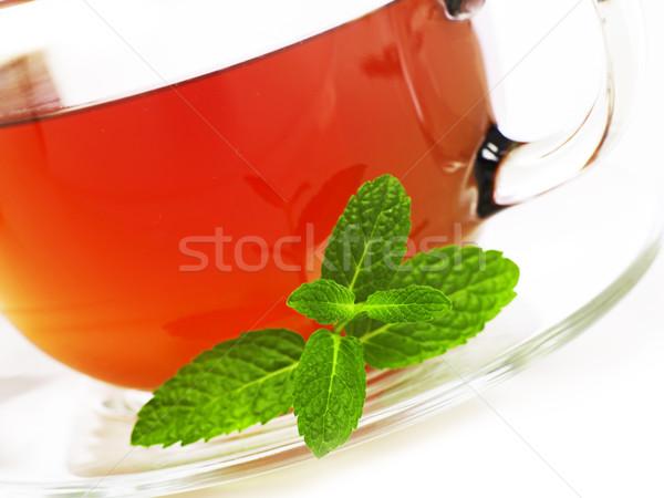 ミント 茶 クローズアップ ストックフォト © goir