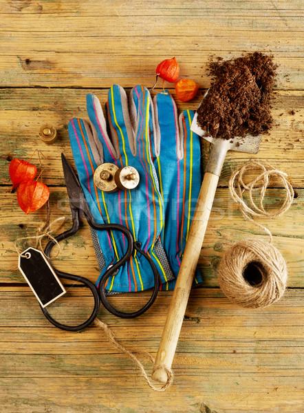 Kerti eszközök fa természet kertészkedés fotózás ásó Stock fotó © goir