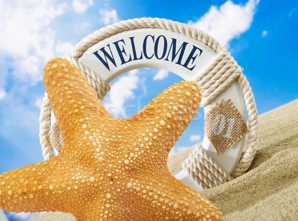 Starfish Bienvenue signe plage sable ciel Photo stock © goir