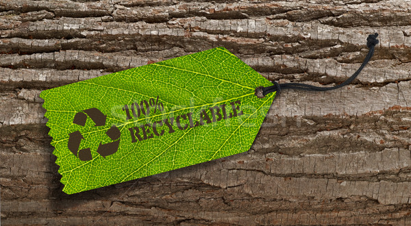 Recycle tag on tree bark Stock photo © goir