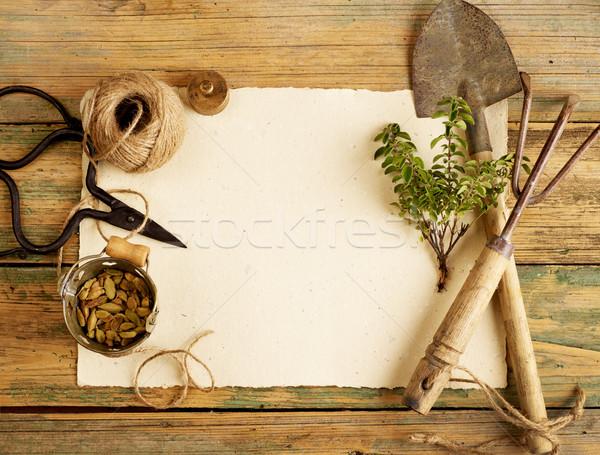 Kerti eszközök üres papír virág természet növény kötél Stock fotó © goir