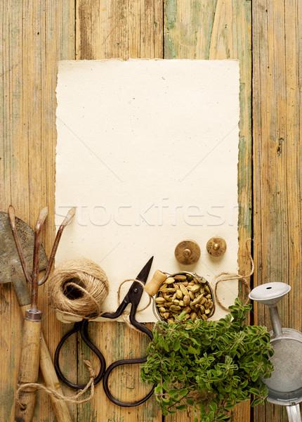 Gardening equipment Stock photo © goir
