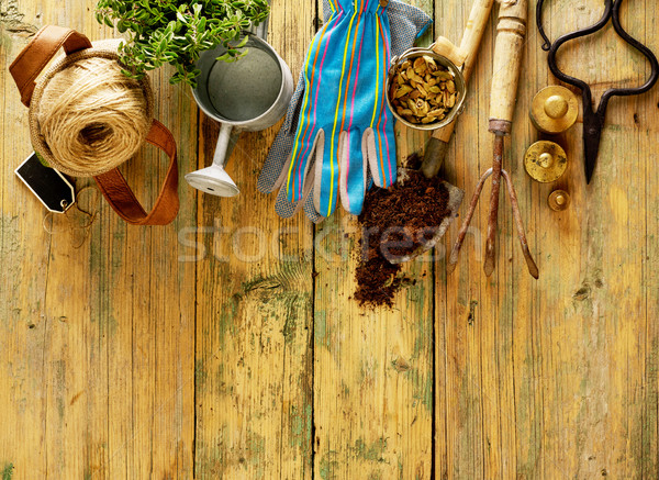 équipement plantes bois espace de copie fleur Photo stock © goir