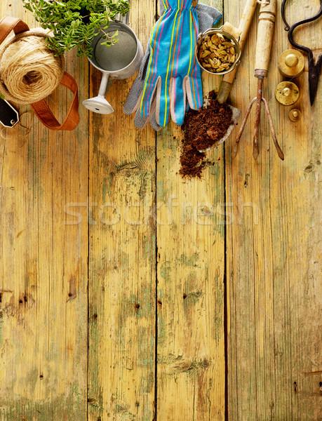 Herramientas plantas madera espacio de la copia flor Foto stock © goir