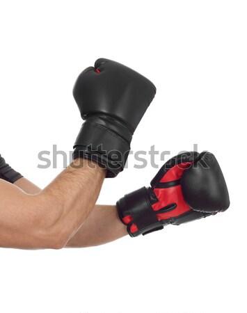 Két személy box izolált fehér férfiak erőszak Stock fotó © goir