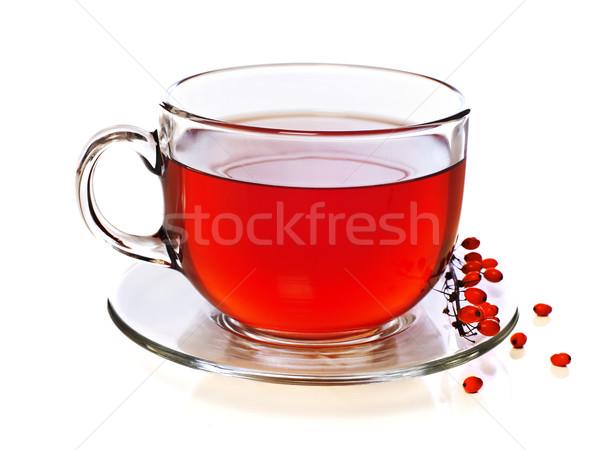 Czerwony kubek herbaty odizolowany biały Zdjęcia stock © goir