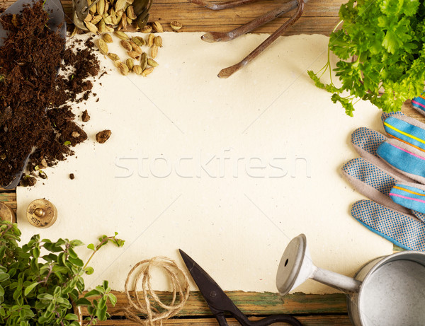 Plants,  gardening tools and blank paper Stock photo © goir