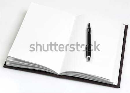 Open boek pen boek witte papier Stockfoto © goir