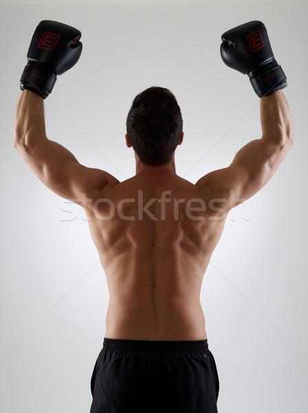 Gagnant torse nu musculaire boxeur gymnase succès Photo stock © goir
