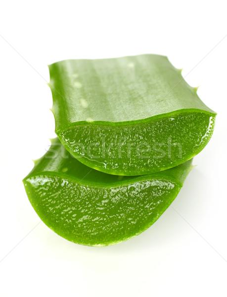 Aloe aislado blanco alimentos hoja planta Foto stock © goir