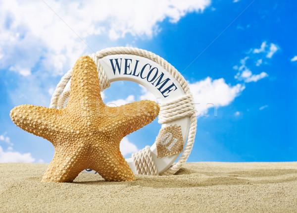 Tengeri csillag üdvözlet felirat tengerpart homok égbolt Stock fotó © goir