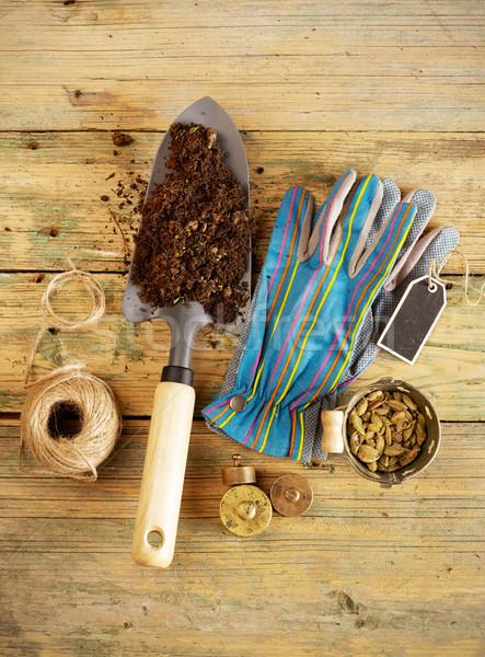 Shovel, seeds and gloves Stock photo © goir