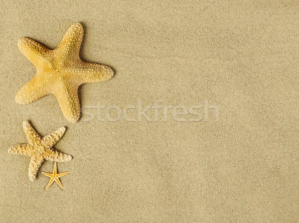 Starfishes on sand Stock photo © goir