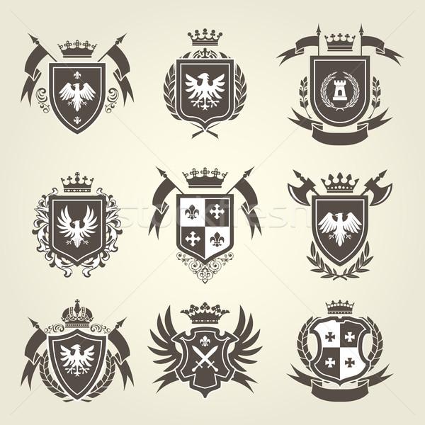 Middeleeuwse koninklijk jas armen ridder schild Stockfoto © gomixer